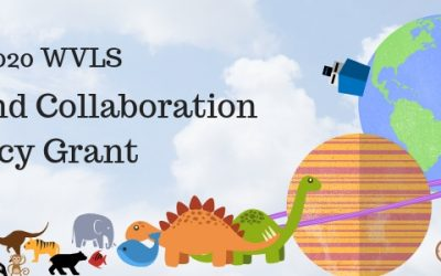 2019-2020 WVLS Innovation and Collaboration Literacy Grant