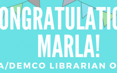 """WVLS Director Wins """"Librarian Of The Year"""""""