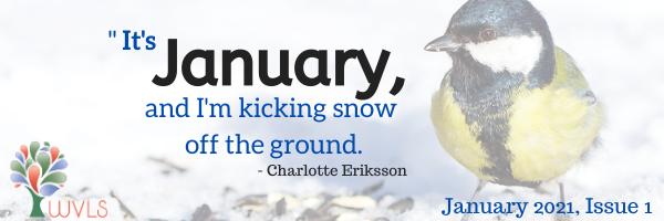 WVLS January Newsletter